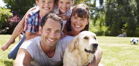 junge Familie liegend auf der Wiese mit Hund