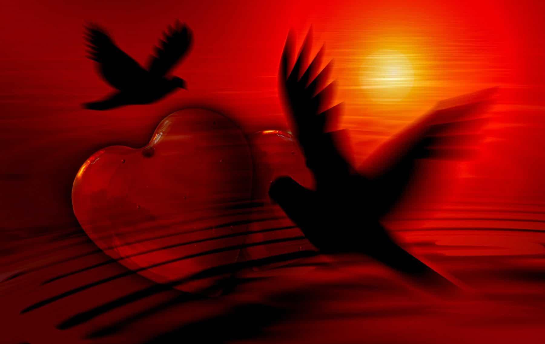 Tauben und ein Herz im Sonnenuntergang