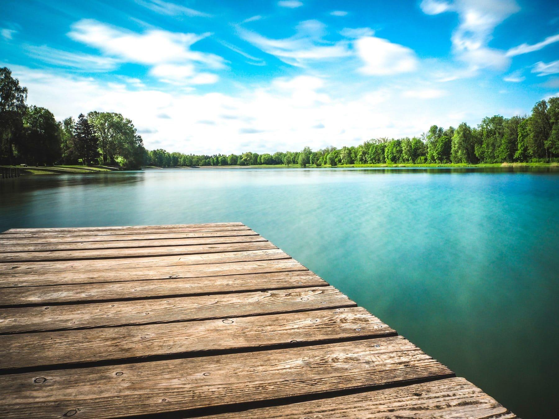 Blick auf einen baumgesäumten See