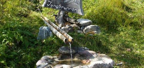 Alter Brunnen mit Holzschild Jungbrunnen