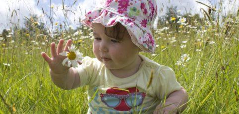 kleines sitzendes Mädchen auf einer Blumenwiese