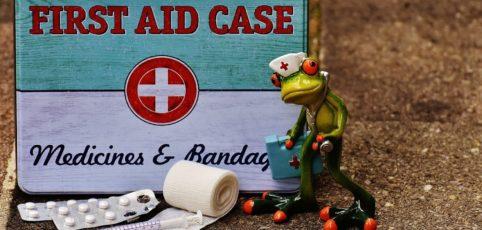Erste Hilfe Kästchen mit Frosch als Krankenschwester