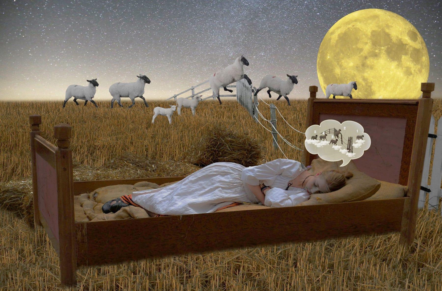 Träumende Frau in Bett auf einem Feld, springende Schäfchen zählend