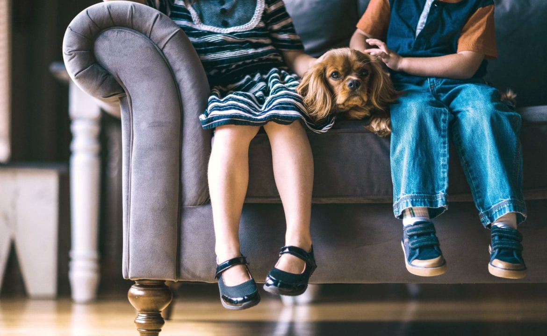 Zwei kleine Kinder auf einem Sofa mit kleinem Hund in ihrer Mitte