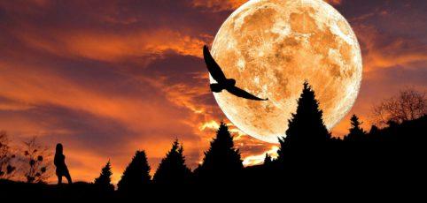 ein mystischer Abendhimmel mit einem riesigen Mond in orangem Licht
