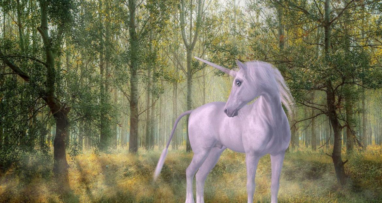 weißes Pferd mit Einhorn in einem Märchenwald