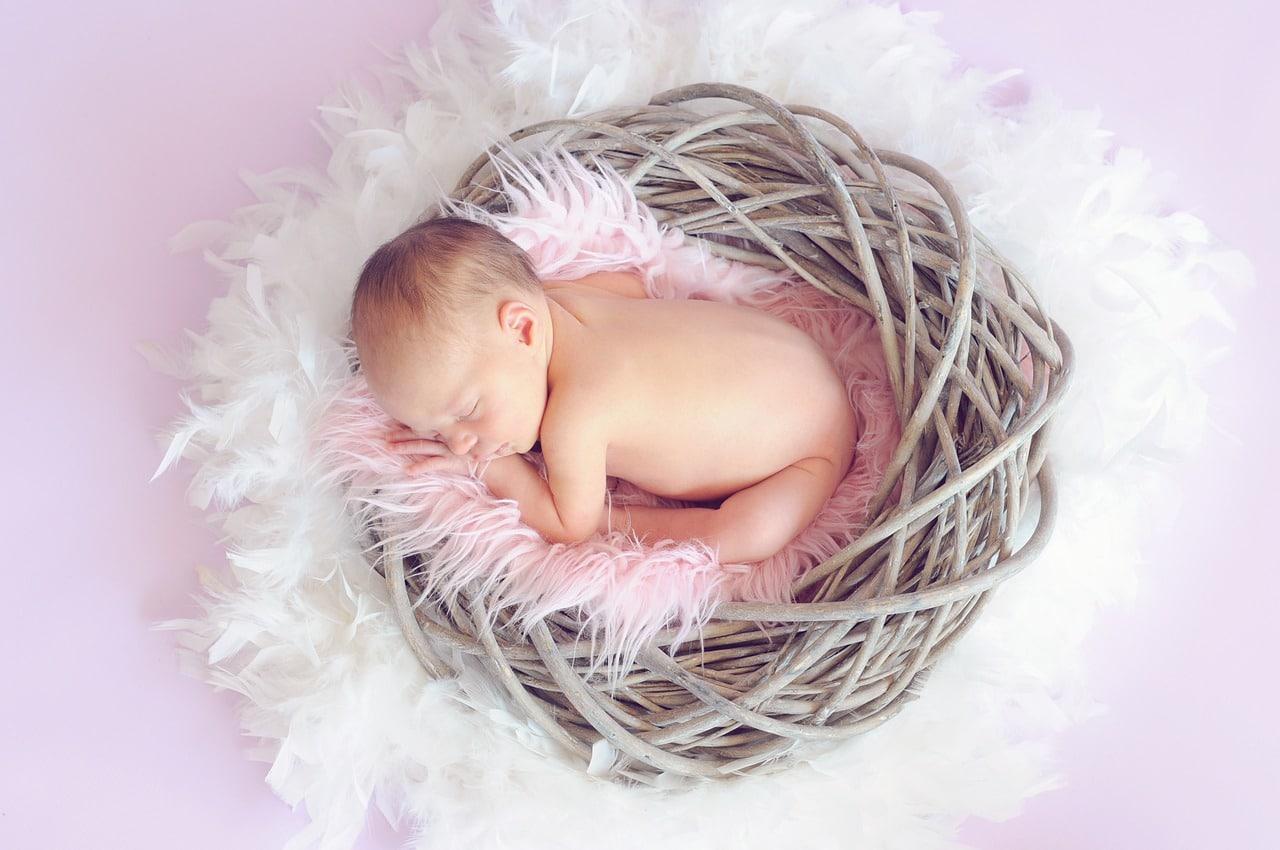 Baby in einem Nest mit federn und Kuscheldecke