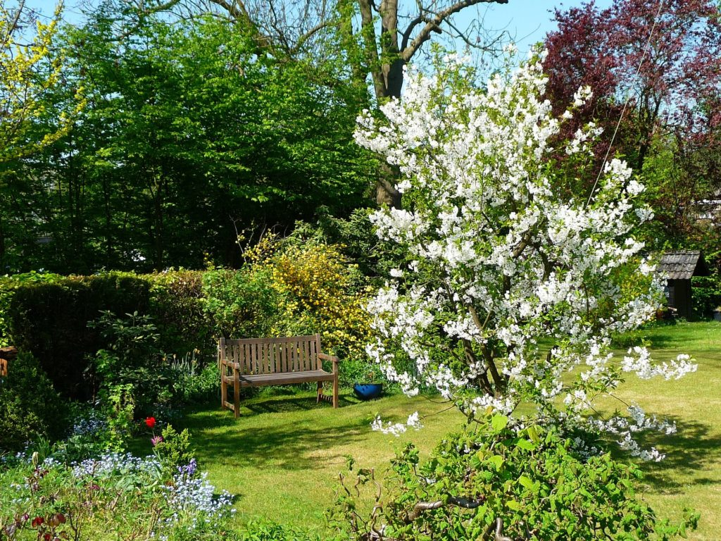 Garten im Frühling/Sommer