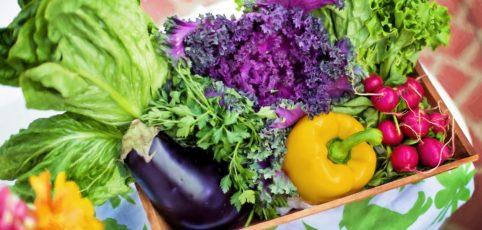 Ein Korb voller frischem Gemüse