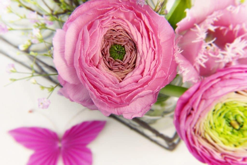 Ranunkel und andere frische Schnittblumen
