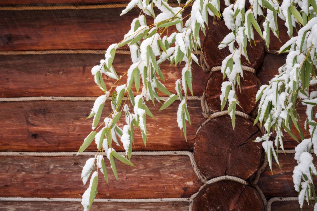 Bambuszweig mit Schnee vor einem Holzhaus